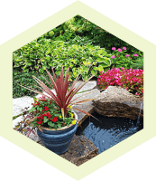 French Drainage, yard drainage, lawn care