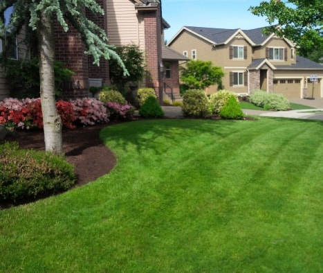 front yard perfectly maintained, lawn mowed, edges well defined, barkdust and mulching applied.